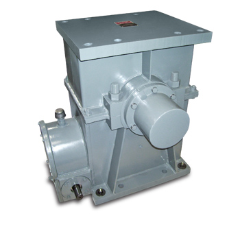 Hoist Worm Gear Drives