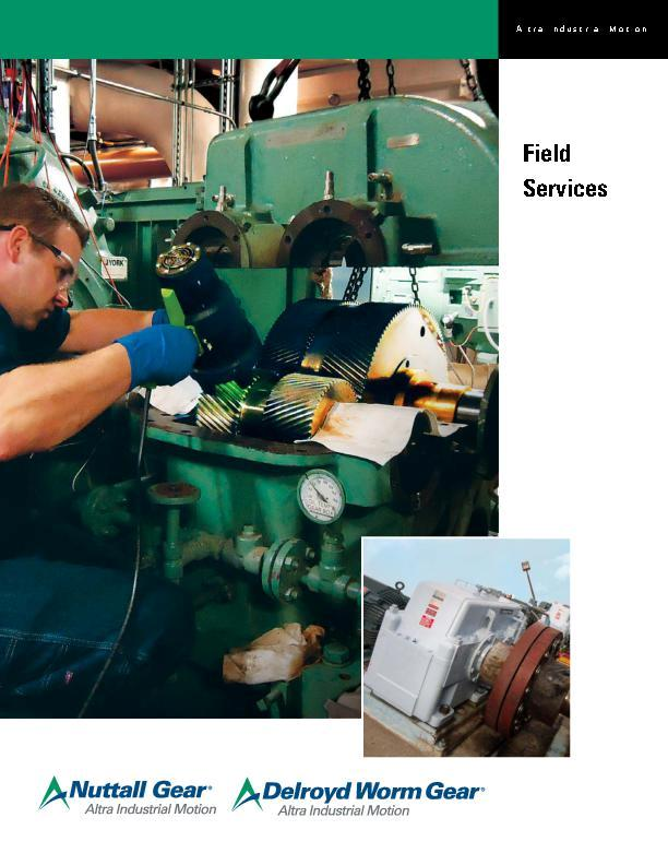 Nuttall Gear & Delroyd Worm Gear Field Services